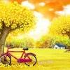 จักรยานในทุ่งหญ้า