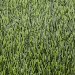 หญ้าเทียมสนามฟุตบอล GSF-M520-ZG