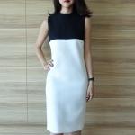 High Neck Two-Tone Sleeveless Dress
