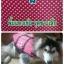 เสื้อชูชีพสุนัข thumbnail 1