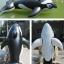 Intex แพยาง วาฬน้อย thumbnail 5