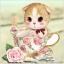 แมวเหมียวในแก้วชากุหลาบ thumbnail 1