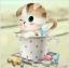 แมวเหมียวในแก้วท๊อฟฟี่ thumbnail 1