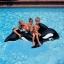 Intex แพยาง วาฬน้อย thumbnail 3