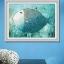 ป. ปลาตากลม (ใหญ่) thumbnail 1